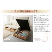 日式 多功能 儲物箱  貴妃椅 (不包括梳化)
