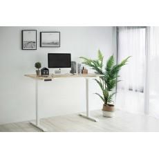 電動升降桌 多功能 電腦桌